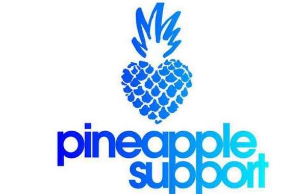 Pineapple Support Marks Progress on 1st Anniversary